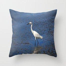 Sea Scoundrel Throw Pillow
