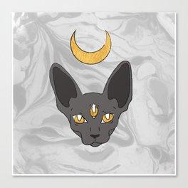 Three cat eyes grey skies Canvas Print