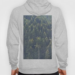 Forest autumn greece Hoody