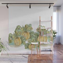Antique Botanical Sketch Pumpkin Wall Mural
