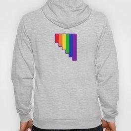 Homosexuality Hoody