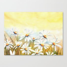 Daisies Watercolor Canvas Print