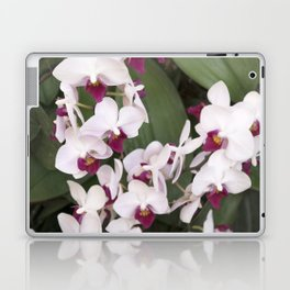 Longwood Gardens Orchid Extravaganza 1 Laptop & iPad Skin