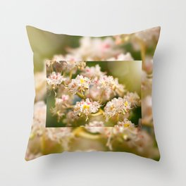 Aesculus chestnut tree blossoms Throw Pillow