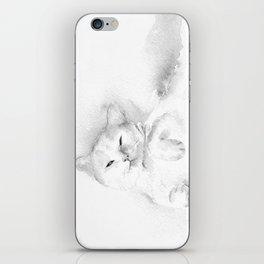 Playful Cat II iPhone Skin