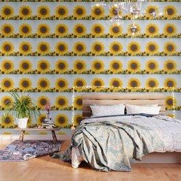 Sunflower´s Season (V) Wallpaper