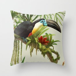 Channel- billed toucan vintage illustration. Throw Pillow