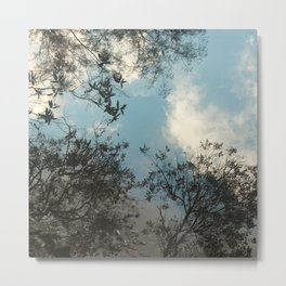 Trees and clouds reflected Metal Print