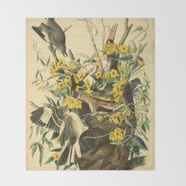 Northern mockingbird Throw Blanket