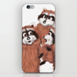 Raccoon Series: Discussion iPhone Skin