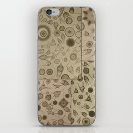 Diatom Design iPhone Skin