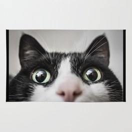 Funny Cat Rug