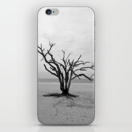 Botany Bay 2 iPhone Skin