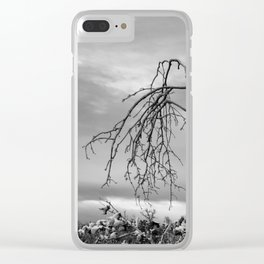 342 | bastrop state park Clear iPhone Case