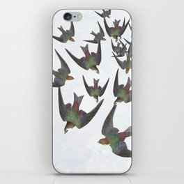 Dipping and dancing barn swallows iPhone Skin