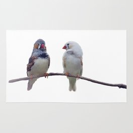 chestnut-eared finch or Australian zebra finch watercolor Rug