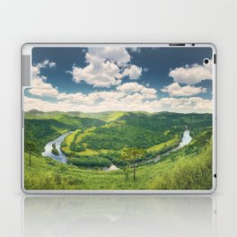 Pelotas Horseshoe Laptop & iPad Skin
