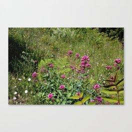 Nature gardens Canvas Print