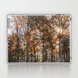 Fall Colors Laptop & iPad Skin