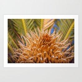 Plant in Puerto Rico Art Print