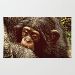 Baby Chimpanzee Cuddling Close to Mom with Vintage Look Rug