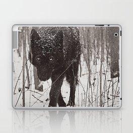 Snow Wolf Laptop & iPad Skin