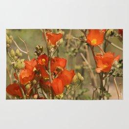 Desert Wildflower - 4 Rug