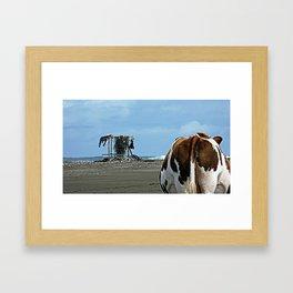 Cow at the beach Framed Art Print