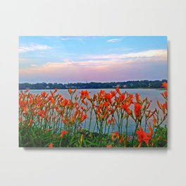 Tiger Lillies on the Coast of Maine in South Portland Metal Print