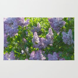 Summer lilac nature pattern Rug