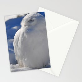 Snowy in the Snow by Teresa Thompson Stationery Cards