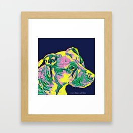 Yellow Dog 6 Framed Art Print