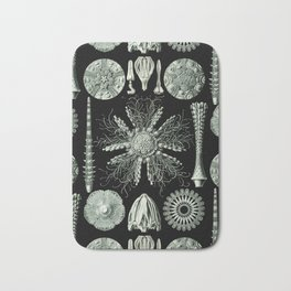 Ernst Haeckel - Scientific Illustration - Echinidea (Sea Urchins) Bath Mat