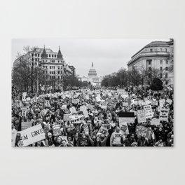 Women's March on Washington Canvas Print