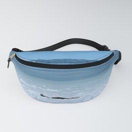 Seals on Ice Fanny Pack