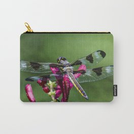 The original biplane Carry-All Pouch