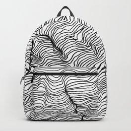 Viscosity Backpack