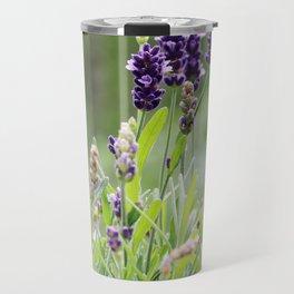 Lavender flower in tin pot Travel Mug