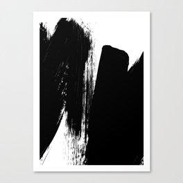 Monochrome Ink 02 Canvas Print