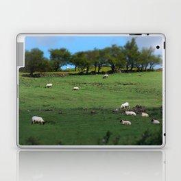 Field of Irish Sheep Laptop & iPad Skin