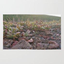 Tiny Plants Rug