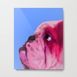 English bulldog portrait, Blue Pop art. Metal Print