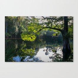 Florida river Canvas Print