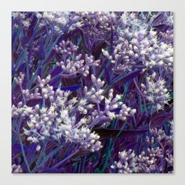 Bunches of Tiny Flowers Canvas Print