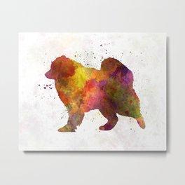 Samoyed in watercolor Metal Print