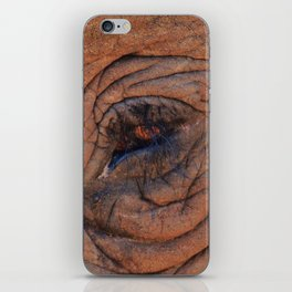 Elephant Eye iPhone Skin