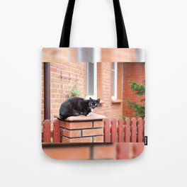 lonely stray black cat sitting Tote Bag