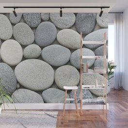 Grey Beige Smooth Pebble Collection Wall Mural