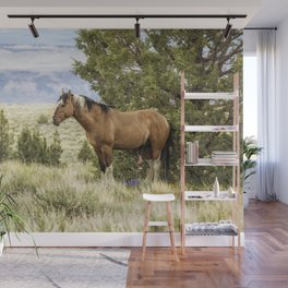 Stallion Relaxing on So Steens Mountain Wall Mural