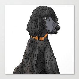 Misza the Black Standard Poodle Canvas Print